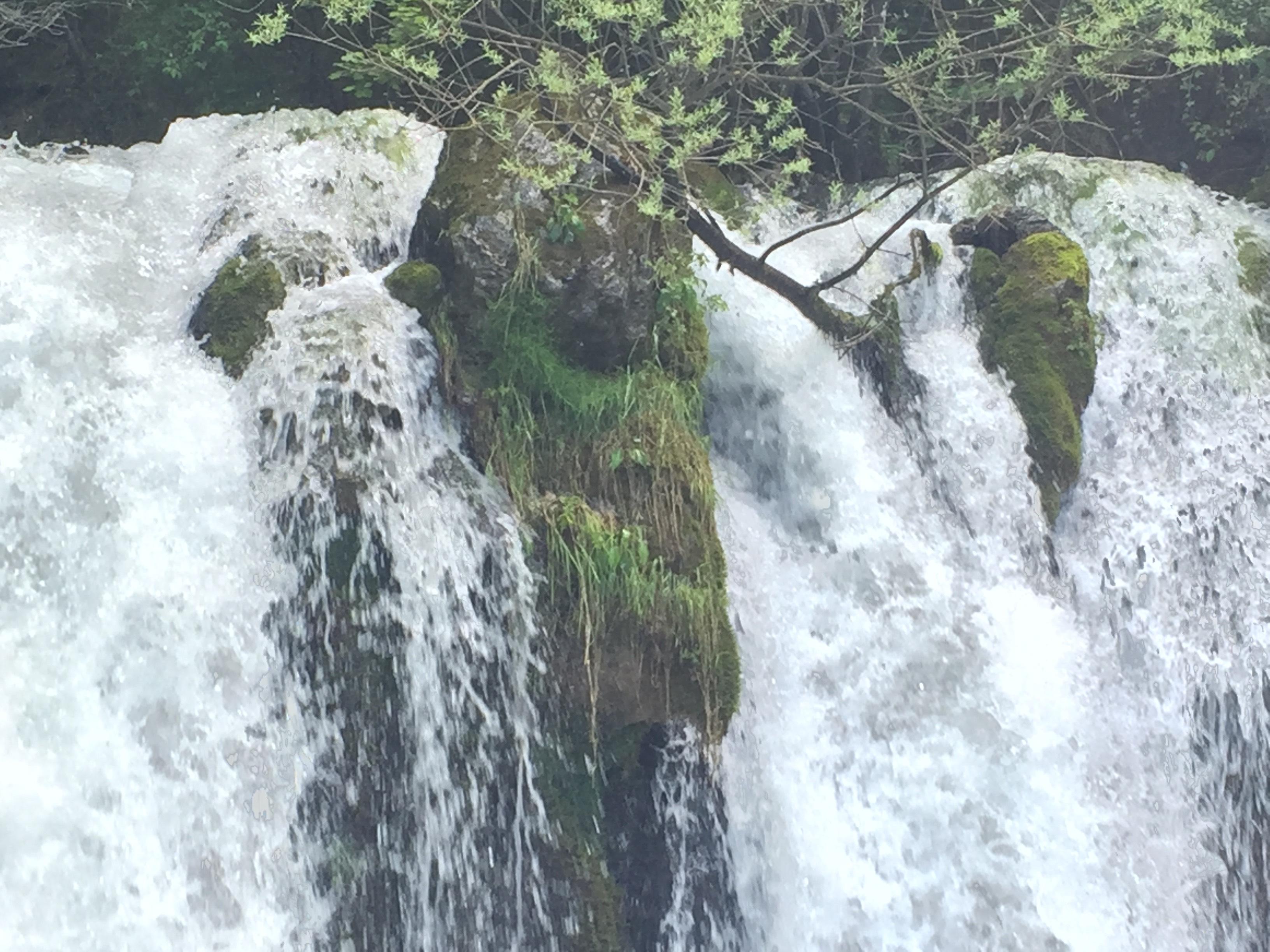 28-Amb l'aigua al coll (Natura)