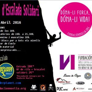 Open Solidari 2016